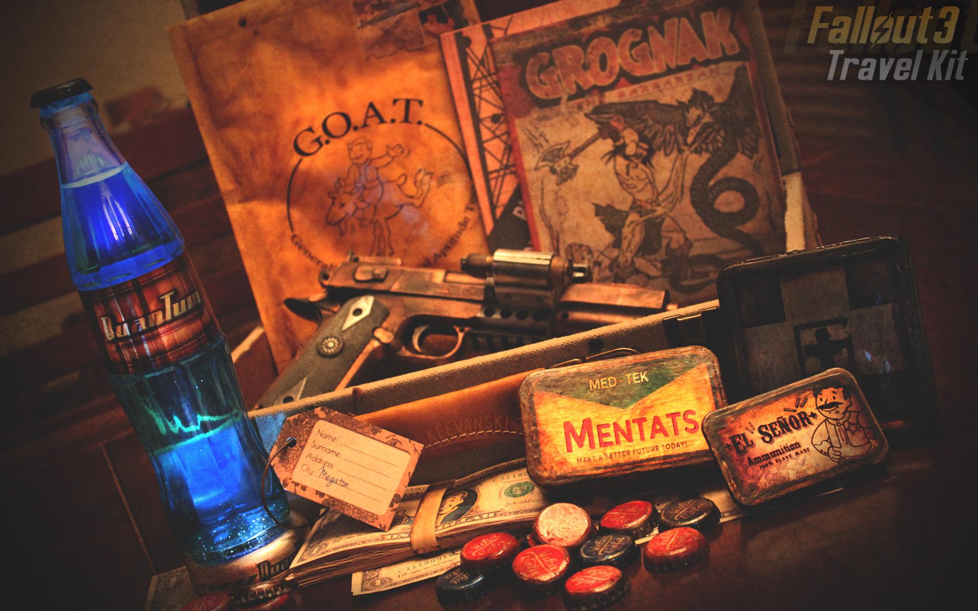 Fallout 3 Travel Kit + Downloads