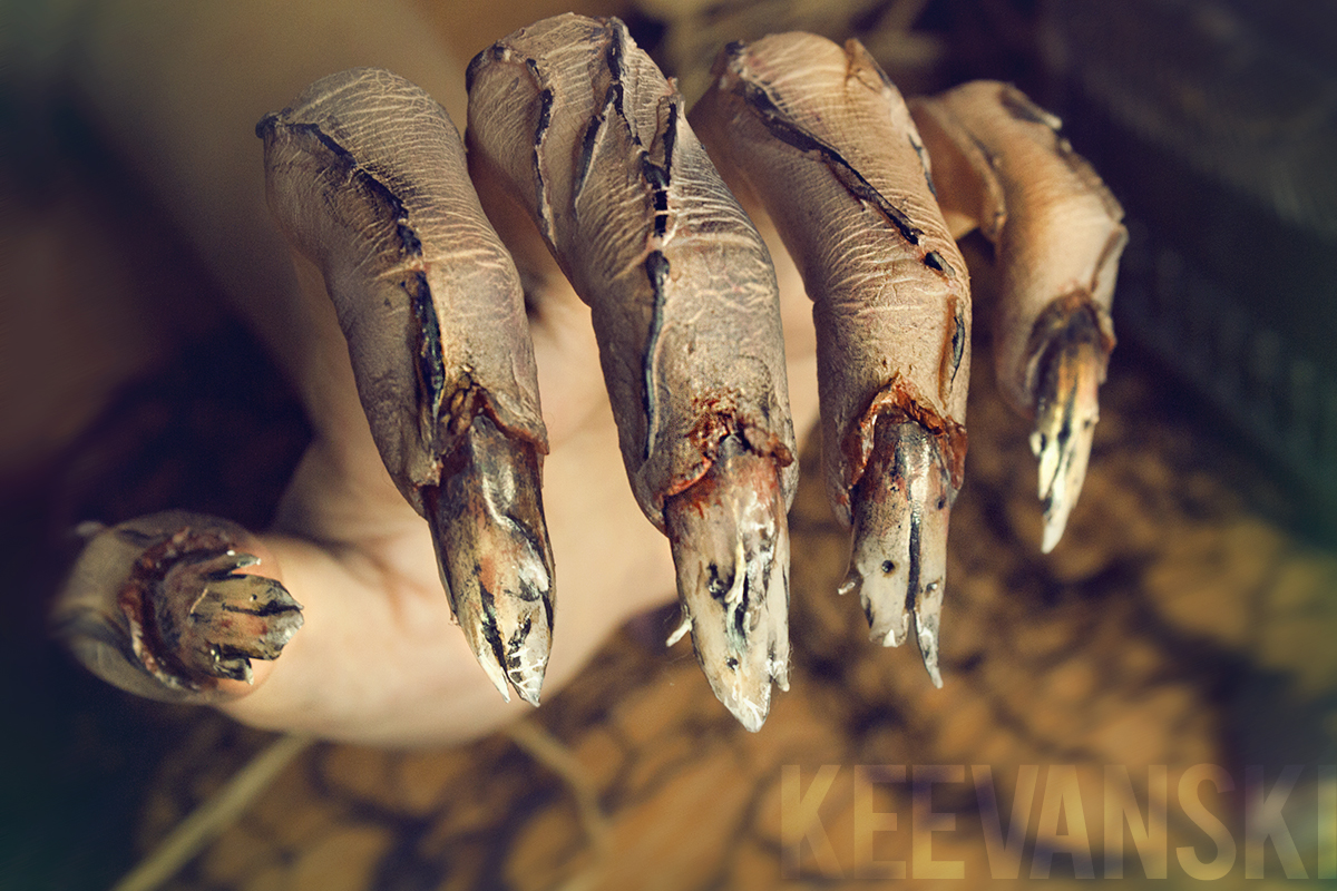 cursed-hands-manos-malditas-makeup-sfx-3-by-keevanski